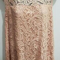 Nwt Adrianna Papell Warm Blush Lace Sleeveless Overlay Tank Top   Size L  500c Photo