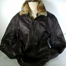 Nwt-Andrew Marc Brown Leather Jacket Rabbit Fur Collar- L Photo