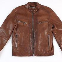 Nwt Andrew Marc Leather Moto Jacket Insulated Zip Sleeve Brown Espresso Medium Photo