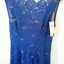 Nwt Anthropologie Cerulean Sky Tracy Reese Royal Blue Lace Dress Size 2 248 Photo