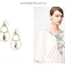 Nwt Anthropologie Earrings Photo