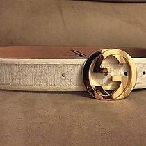 Nwt Authentic White Gucci Belt W/ Gold Buckle 95 Cm Fits 30-34 Photo