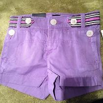 Nwt Baby Gap Baby Girl Shorts 2t Photo