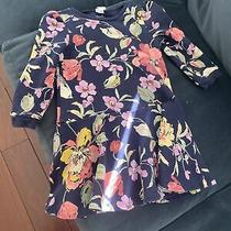 Nwt Baby Gap Blue White Floral Fit and Flare Dress Toddler Girl Photo