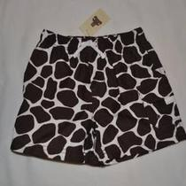 Nwt Baby Gap Boy's Giraffe Safari Cargo Shorts Elastic Waist 6-12 Months New Photo