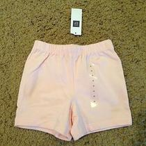 Nwt Baby Gap Cotton Shorts for Boy or Girl Brand New  Photo
