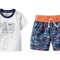 Nwt Baby Gap Villa America Swim Bathing Suit Set Sharks Fish 18-24 Months Boy Photo
