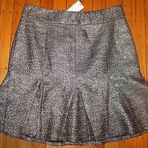Nwt Banana Republic Women's Fluted Shine Skirt Size 6 Metallic Retail 98 Photo
