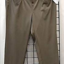 Nwt Basler Sz 20 Brown Smooth Polyester/spandex Tapered Techno Pants 100354e Photo