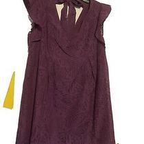 Nwt Bcbg Generation Sun Dress Coverup Violet Purple Lined Sheer Fabric Size M Photo