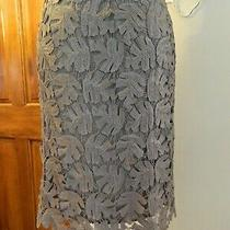 Nwtbcbg Max Azria Taupe Sequin Leaf Pattern Skirt Size Medium Retail 278mint Photo