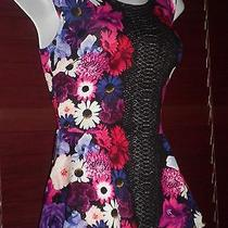 Nwt Bebe Bloom Riot Zip  Peplum Top  Sz M Not Containable This Top Is So Hot Photo