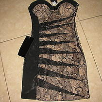 Nwt Bebe Strapless Black Lace Nude Lining Lingerie Dress Soldout 139 Sz 00 Photo