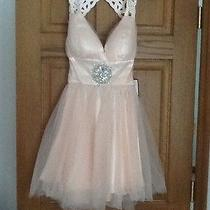 Nwt Bee Darlin Prom Dress Short Formal Sz 5/6 Blush Nude Champagne Gem Cut Out  Photo