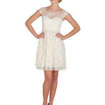 Nwt  Belle by Badgley Mischka Scallop Lace Cocktail/party Dress in Ivory Sz 8  Photo