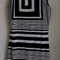Nwt Black and White Bebe Dress Photo