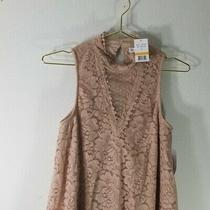 Nwt Blush Pink Lace 'Skylar  Jade' Lined Keyhole Sleeveless Tank Top - Small Photo