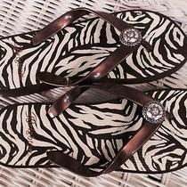 Nwt Brighton Stripe Zebra Bronze & Silver Accent Wedge Flip Flop Sandals Size 7 Photo