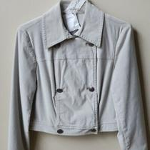 Nwt Calvin Klein Double-Breasted Velveteen Jacket Limestone  6 Photo