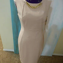 Nwt Calvin Klein Womens Dress Size 8 Blush Sleeveless Cd7p1g2u Msrp 134 Photo