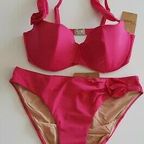 Nwt - Chantelle Florea Balconette Bikini - 32d / Eu36 Photo