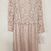 Nwt Chetta B Champagne Blush Pink Lace Cocktail Dress 12 Photo