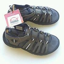 Nwt Childrens Sorel Sandals Size 13 Gray With Blue & Black Trim Photo