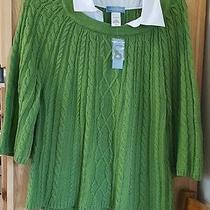 Nwt Classic Elements Cable Knit Sweater.  Size Xl  Green Photo