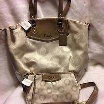 Nwt Coach 25183 Ashley Dotted Op Art North South Satchel Khaki/taupe W/wristlet Photo