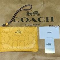 Nwt Coach 2961 Corner Zip Wristlet in Perforated Signature Leather Honey Yellow  Photo