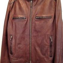 Nwt  Coach     Brown Cafe Racer  Leather Jacket    Size Large  Photo