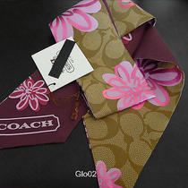 Nwt Coach Flower Floral Pink Khaki Signature Ponytail Pony Tail  Scarf New 97271 Photo