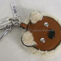 Nwt Coach Key Ring F64749 Furry Bear  Great Gift or Accessory for Your Bag. Photo