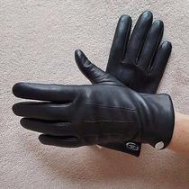 Nwt Coach Ladies Sheep Leather Gloves Merino Wool Lined 85876 - 6 1/2 - Black Photo