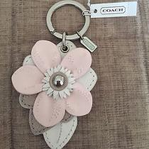 Nwt Coach Leather Flower Charm Key Chain Ring Purse Bag Fob F 69956 Whitepink Photo
