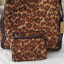 Nwt Coach Madison Ocelot Phoebe  Bag Ocelot Brown Leopard 32410 Wristlet Set Lot Photo