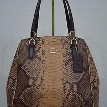 Nwt Coach Minetta Satchel / Crossbody Snakeskin Embossed Leather Brown F35271.  Photo