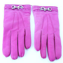 Nwt Coach Pink Leather Cashmere Lining Dogleash Signature Cuff Gloves Sz 8  Photo