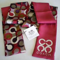 Nwt Coach Poppy Signature Stamped C Pony Neck Bag Belt Scarf Silk Extra Long 50