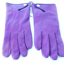 Nwt Coach Purple Leather Cashmere Lining Snap Wrist Gloves Sz 8  Photo