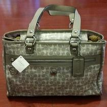 (Nwt) Coach Signature Chelsea Bias (Grey/silver/white) Item F17179 Photo