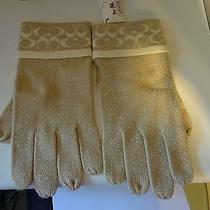Nwt Coach Signature  Touch Glove   Photo