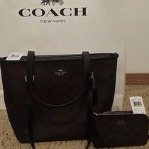Nwt Coach Signature Zip Top Tote & Matching Wristlet Brown/blk Brand New W/tag Photo