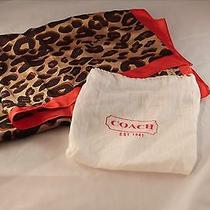 Nwt Coach Silk Leopard Print Scarf Photo