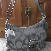 Nwt  Coach Soho Signature