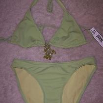 Nwt Dkny Mambo Green Bikini 112  Size Petites Swimwear Photo