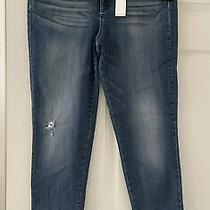 Nwt Ella Moss High Rise Stretch Denim Jeans 32 Waist Photo