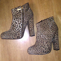 Nwt Express 70 Leopard Print Side Zipper Ankle Boots 7 Great Deal Look Photo