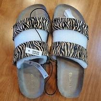 Nwt Express Animal Print Calf Hair Sandals 7.5 Photo