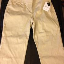 Nwt Express Editor Capri Dress Pants 6 Photo